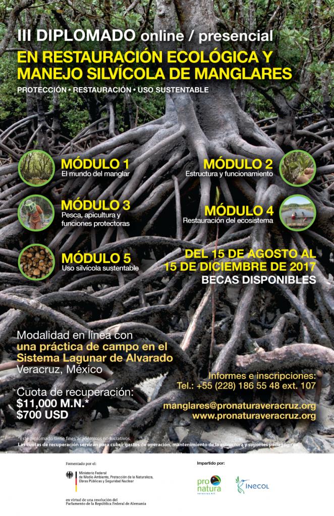 Cartel_Diplomado_Manglares_web