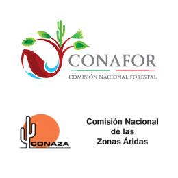 CONAFOR_CONAZA_ENTRADA