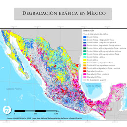 Perspectiva degracion-recursos-edaficos_causas_260px