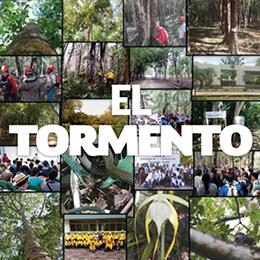 Collague-El-tormento_02_DES