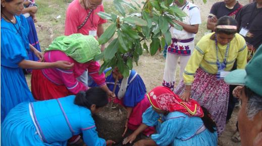 Ecotecnias zonas indigenas 2_INT