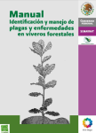 Manual de identificaci n y manejo de plagas y enfermedades for Manejo de viveros forestales